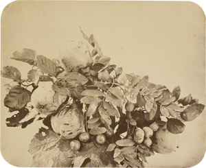 Lot 4018, Auction  111, Braun, Adolphe, Still life with quinces and berries