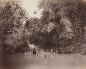 Lot 4026, Auction  111, Ceylon, Jungle and river landscapes of Ceylon