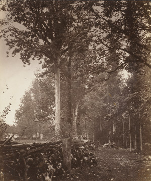 Lot 4049, Auction  113, Kotzsch, August, Stone wall in forest; Picturesque farm