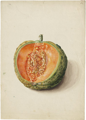 Lot 6259, Auction  114, Blaschek, Franz, Cantaloupe-Melone